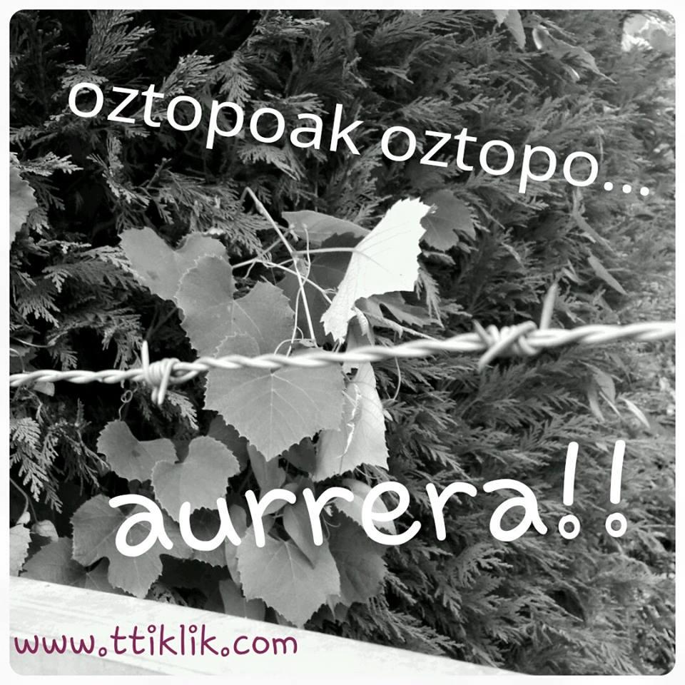 oztopoak-oztopo